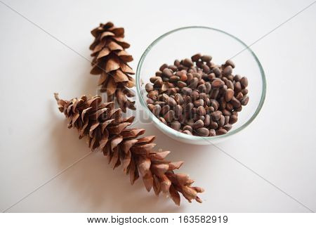 harvest of cedar cones and nuts on white