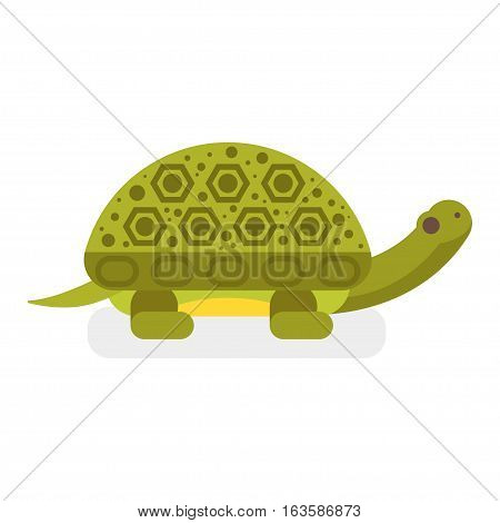 Vector flat style illustration of turtle. Icon for web. Isolated on white background.