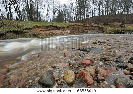 Natural erosion shore of wild forest river