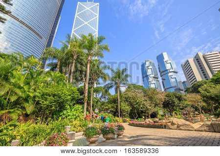 Hong Kong skyline of modern skyscrapers and towers in Central business district in a sunny day with blue sky seen from the Hong Kong Park, China, Asia.