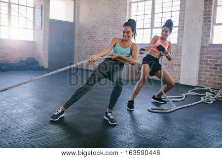 Shot of two strong young women doing rope pulling exercises at a gym. Fitness females pulling rope at gym and smiling.