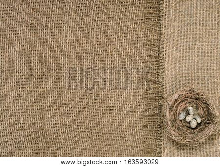 bird's nest on a background of burlap.