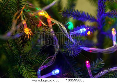 Christmas background, Christmas tree with colorful lanterns close-up. The glowing lights, New Year