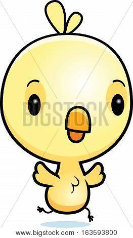 Cartoon Baby Chick Running