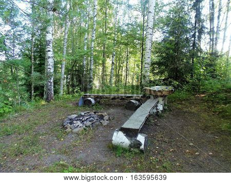 Summer, forest, two benches made of logs, a wooden Desk, an extinct fire, the coals