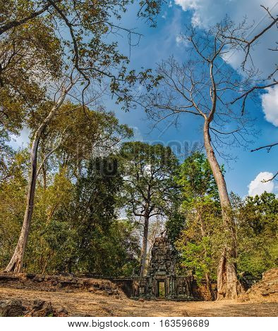 Mysterious gopura on woods background near Baphuon temple in Angkor Thom Complex, Siem Reap, Cambodia. Ancient Khmer architecture, famous Cambodian landmark, World Heritage