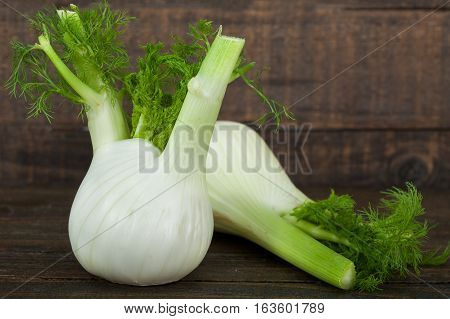 Fresh organic fennel on wooden dark table
