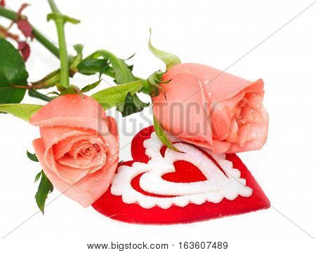 Two pink roses and heart on white. Roses with water drops heart from red material with an ornament is isolated on white