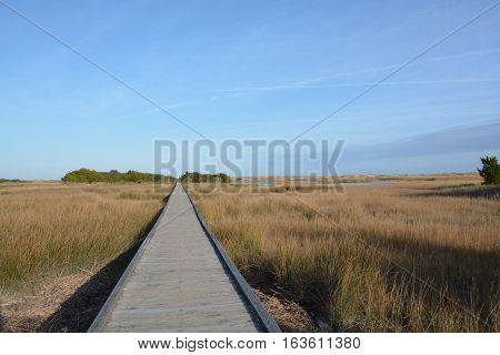 A long board walk near the shore in North Carolina