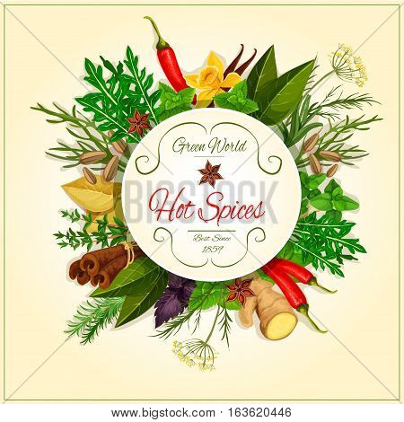 Spices and spicy herbs of ginger, mint leaves, thyme, vanilla, chili hot pepper, oregano, coriander with parsley bunch, aroma cinnamon and cloves, marjoram, tarragon and cilantro, rosemary, bay, dill, cumin and basil. Vector poster of condiments