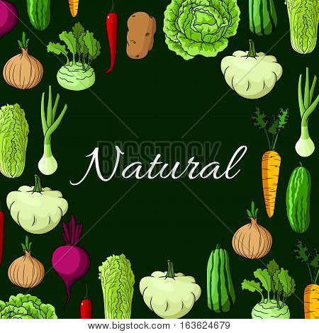 Veggies poster of farm harvest vegetables. Vector cabbage with zucchini squash, leek or celery, onion, kohlrabi and beet, chinese cabbage napa, carrot and potato, chili or bell pepper with cucumber. Vegetarian healthy food cuisine