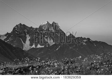 Bw Landscape With Mountain Ushba
