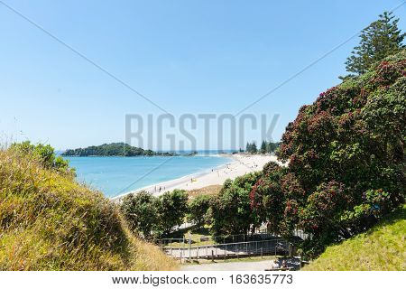 Ocean beach view over and framed by pohutukawa trees from of Mount Maunganui