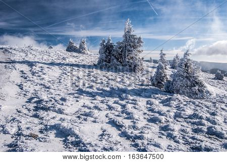 winter mountain meadow with snow, isolated hrubs and blue sky with clouds in Fischbacher Alpen mountains in Styria