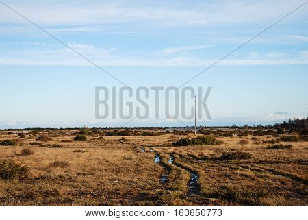 Wet tracks in a plain grassland The Great Alvar at the swedish island Oland