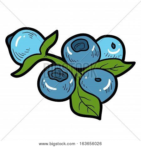 Color image with vector cartoon berry, Blueberries