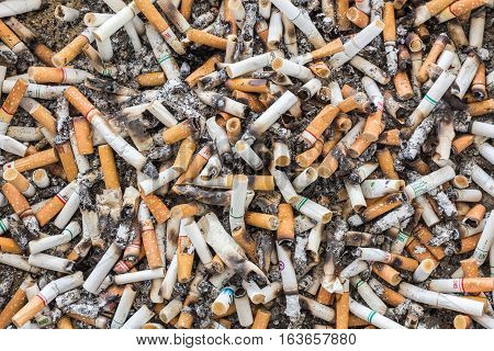 PHUKET THAILAND - DECEMBER 11 : Shot of dirty cigarettes butts in ashtray in Phuket on December 11 2016.