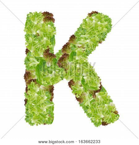 Letter K alphabet with hydroponics leaf ABC concept type as logo isolated on white background