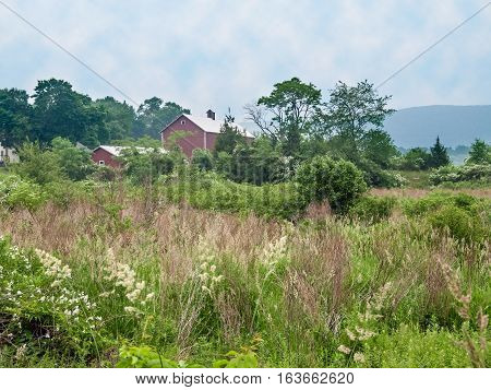 A scenic rural Summer landscape taken in rural Sussex County New Jersey.