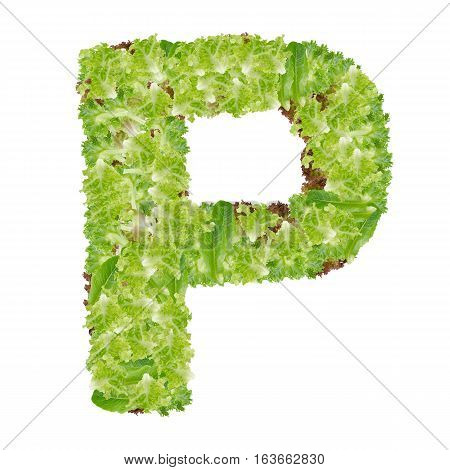 Letter P alphabet with hydroponics leaf ABC concept type as logo isolated on white background