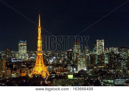 Tokyo, Japan- Night view of the skyline with Tokyo Tower taken from the World Trade Center