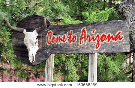 Come to Arizona sign with cow skull.