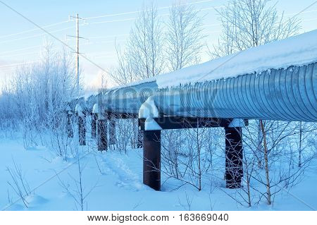 Winter landscape with the snow-covered gas pipeline and trees in hoarfrost