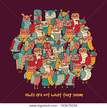 Birds group color owls and funny sign. Color vector illustration. EPS8
