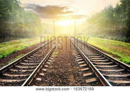 Fog over railroad in forest at the sunrise
