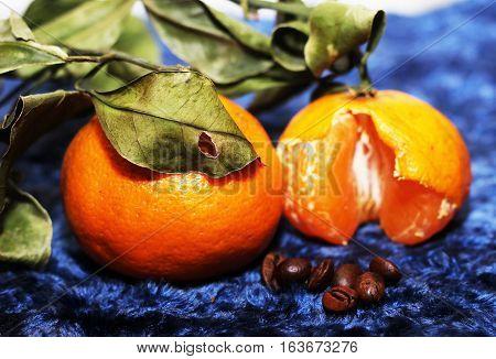 juicy and bright fruit fresh oranges xmas