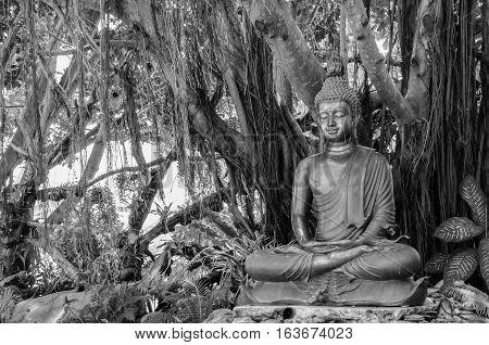 Peace Buddha Statue at Banyan Tree Wat Rong Khun Black and White