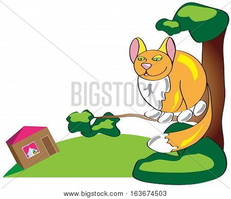 Auburn simple funny cat sitting high in a tree and looking down at his home. Illustration in a primitive style.
