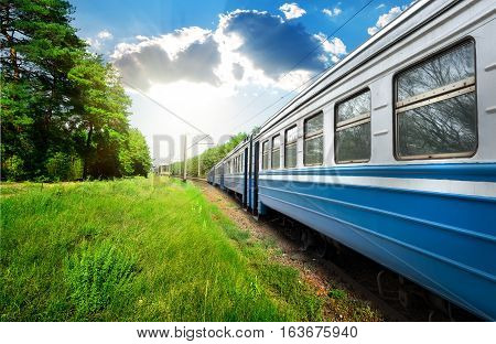 Train wagon and pine forest at sunny day