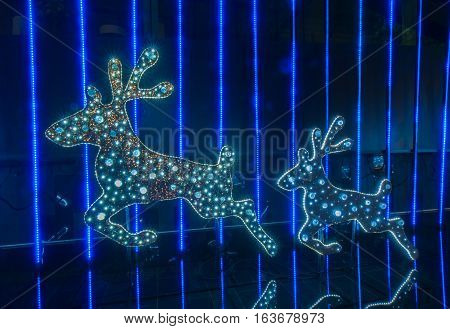 Bangkok Thailand - December 07 : Christmas Decorated With Deer For Merry Christmas & Happy New Year