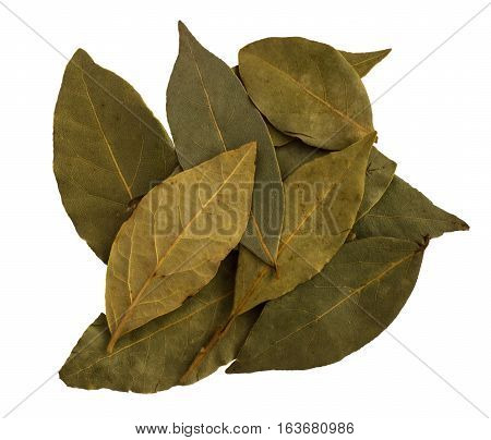 Bay Laurel Leaves On White