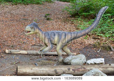 Model of a dinosaur in Dino Parc in Rasnov Romania