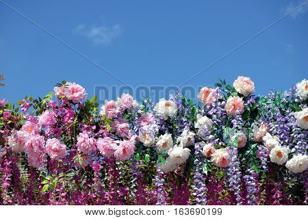 Background from many spring flowers on bottom side of photo under clear blue sky on sunny day