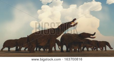 Platybelodon Herd 3D illustration - A Platybelodon herd gather on the plains of Africa to migrate to a better grazing area in the Miocene Era.