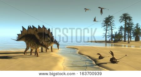 Stegosaurus Dinosaur Morning 3D illustration - Dimorphodon carnivorous reptiles fly over two Stegosaurus dinosaurs coming down to a steam to drink.