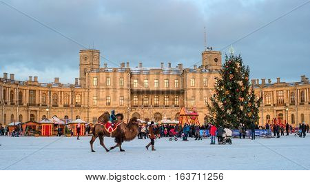 Gatchina, Russia - January 2, 2017: Gatchina Palace, New Year's Fair on the parade ground. People walk around the fair. Children ride on a camel. Photo taken in the evening.