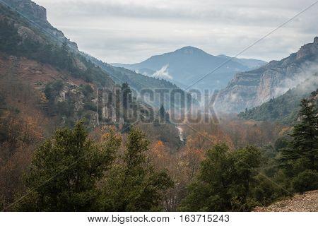 Scenic Foggy Autumn Landscape In Mountains Near Kalavrita, Peloponnesse, Greece