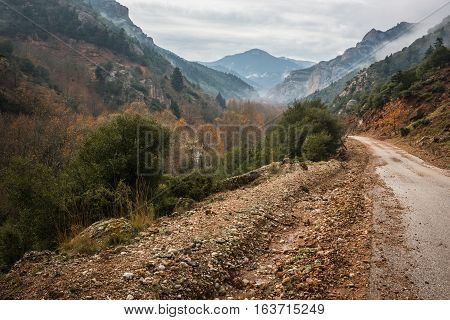 Scenic Foggy Autumn Landscape In Mountains Near Kalavrita, Peloponnesse, Greece