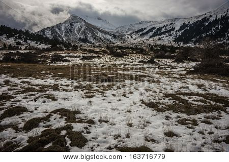 Winter Mountain Snowy Landscape Near Ski Center On Mount Helmos, Peloponnese