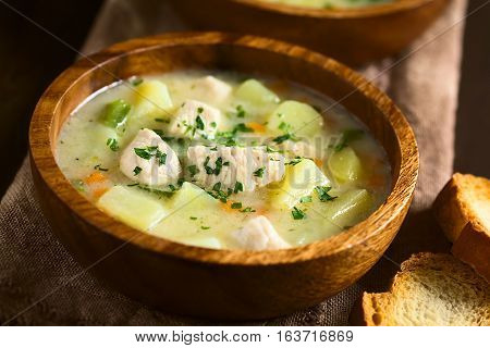 Chicken and potato chowder soup with green bell pepper and carrot in wooden bowl garnished with fresh parsley photographed with natural light (Selective Focus Focus in the middle of the soup)