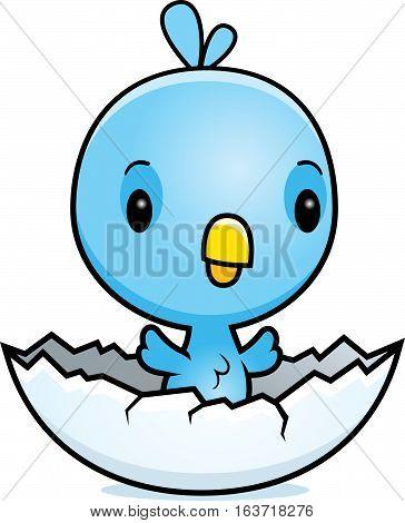Cartoon Blue Bird Hatching