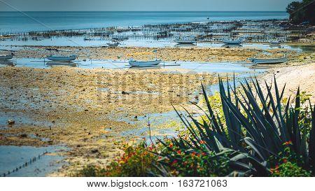 Fisher Boats at low tide near seaweed plantations algal - Nusa Penida, Bali, Indonesia.