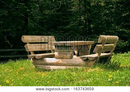 The table in the old green forest