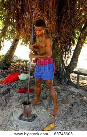 Lavena, Fiji - November 26: Unidentified Man Pounds (blurred Motion) Kava Roots On November 26, 2013