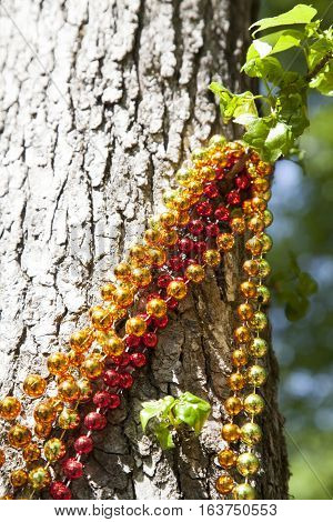Red gold and orange Mardi Gras beads hanging from a tree