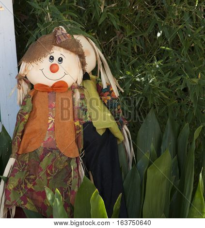 Brightly colored scarecrow hidden near green plants